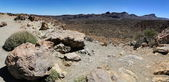Teide nationalpark auf teneriffa, spanien — Stockfoto
