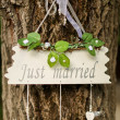 just married — Stock Photo