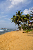 Negombo, Sri Lanka — Stock Photo