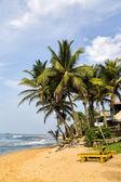 Negombo beach at Sri Lanka — Stock Photo