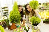 Young women in flower garden — Stock Photo