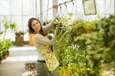 Young woman in flower garden — Stock Photo