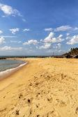 Negombo strand van sri lanka — Stockfoto