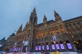 Vienna City Hall At Night — Stock Photo