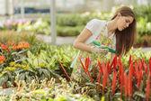 Young women in the flower garden — Stock fotografie
