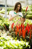 Mujer joven en el jardín de flores — Foto de Stock
