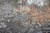 Cracked Stone — Stock Photo