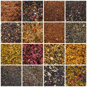 Various teas — Stock Photo
