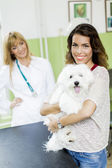 Young woman with a dog at veterinarian — Stock Photo