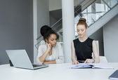 Young women in the office — Stock Photo