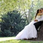 Wedding couple — Stock Photo #7363809