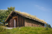 Typical norwegian building with grass on the roof — Stock Photo