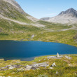 Lake on top of mountains, Norway — Stock Photo #38573209
