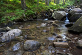 Flowing mountain stream and stones — Stock Photo