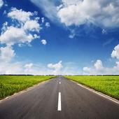Route goudronnée à travers le champ vert — Photo