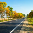 Cars on highway between autumn trees — Stock Photo