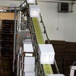 Industrial conveyor line — Stock Photo #12152684