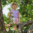 Little girl climbed into tree — Stock Photo #12457174
