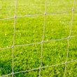 Stock Photo: Goal Netting