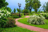In the park after the rain — Stock Photo