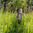 Tall grass in a meadow — Stockfoto