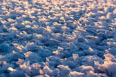 Large crystals of snow — Stock Photo