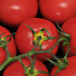 Tomatoes — Stock Photo #12781413