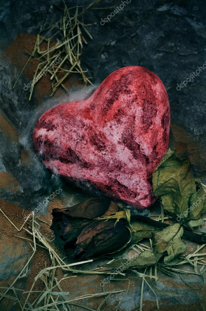Closeup of a bloody heart an a dry rose on a dismal scenery — Stock Photo #12827641