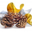 Pine cones and silver and golend garland — Stock Photo #15556101