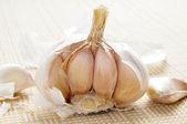 Head of garlics — Stock Photo