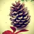 Snowy pine cone — Stock Photo