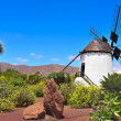 Stock Photo: Windmill in Antigua, Fuerteventura, Canary Islands, Spain