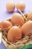 Brown eggs in a basket — Stock Photo