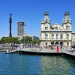 Port Vell and Columbus Monument in Barcelona, Spain - Foto Stock