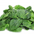 Spinach — Stock Photo #19445015