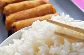 Rice and spring rolls — Stock Photo