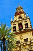 スペイン、コルドバの大聖堂モスクの鐘楼 — ストック写真