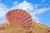 Happy summer — Stock Photo