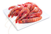 Raw shrimps — Stock Photo