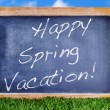 Happy spring vacation — Stock Photo #21015619