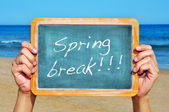 Spring break — Stockfoto