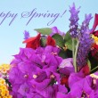 Happy spring — Stock Photo #21515509