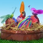 Easter eggs — Stock Photo #21584221