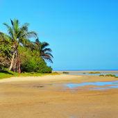 Plaży sotavento w fuerteventura, wyspy kanaryjskie, hiszpania — Zdjęcie stockowe