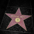 Stock fotografie: Groucho Marx star in Hollywood Walk of Fame, Los Angeles, United