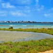 Estany Des Peix in Formentera, Balearic Islands, Spain - Stock Photo