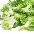 Escarole endive — Stock Photo #23727751