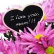 Stock Photo: I love you, mom