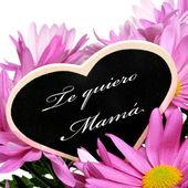 Te quiero mama, I love you mom in spanish — Stock Photo