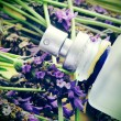 Lavender fragrance — Stockfoto